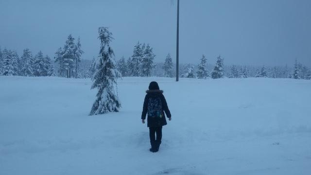 Rovaniemi, 2016